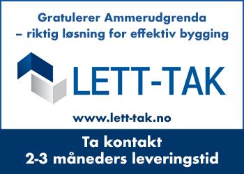 Taksystemet til Ammerugrenda ble levert av Lett-Tak AS.